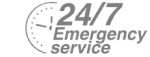 24/7 Emergency Service Pest Control in Stanmore, Queensbury, HA7. Call Now! 020 8166 9746