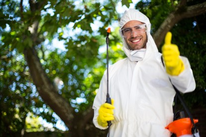 Pest Control in Stanmore, Queensbury, HA7. Call Now 020 8166 9746