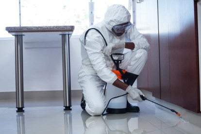 Emergency Pest Control, Pest Control in Stanmore, Queensbury, HA7. Call Now 020 8166 9746